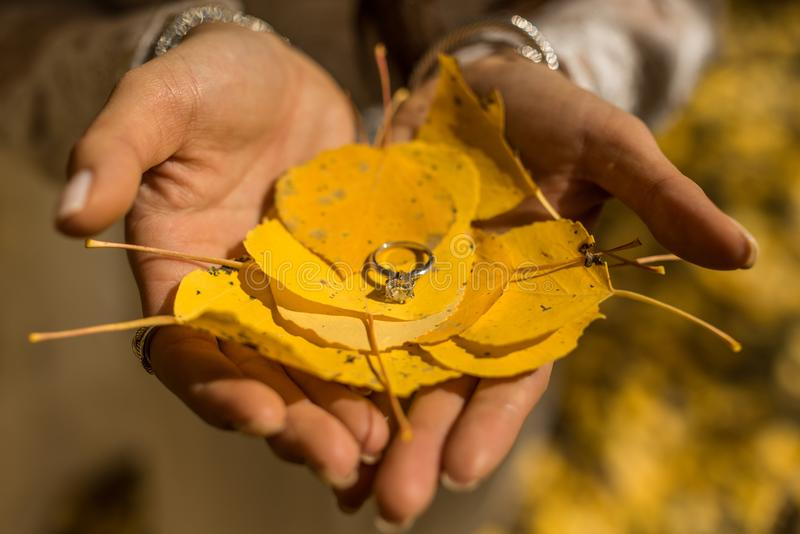 A wedding ring atop yellow autumn foliage. A beautiful wedding ring atop the yellow Aspen tree leaves stock images