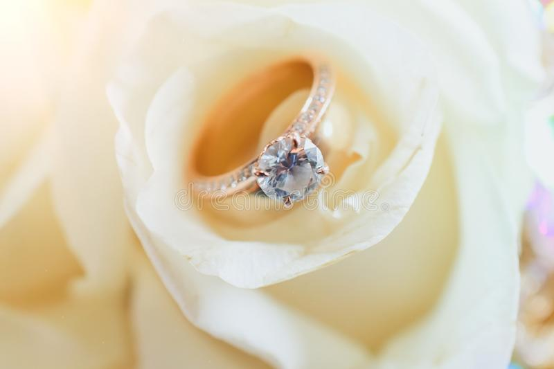 Wedding Ring Placed in white rose royalty free stock images