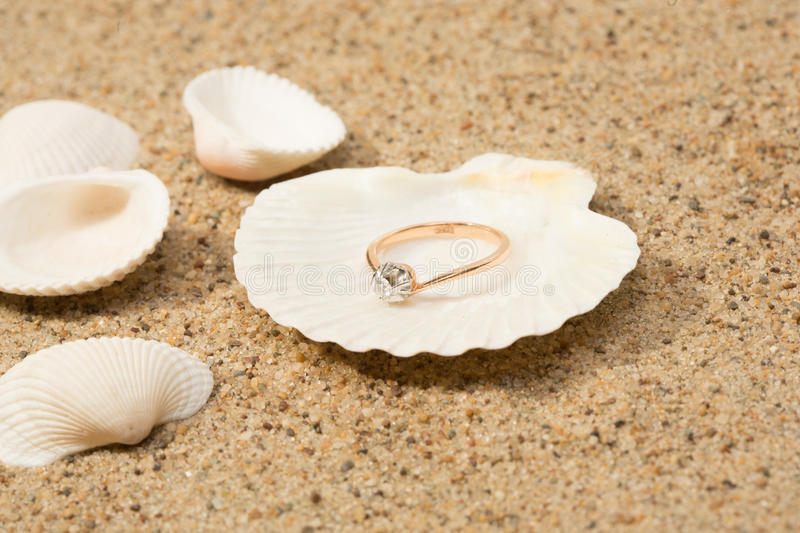 Wedding ring in a shell. Beach still life royalty free stock images