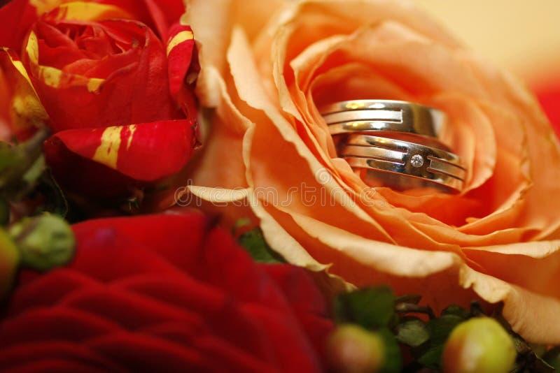 Wedding rings. With diamond inside roses stock photos