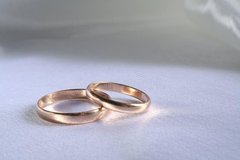 Wedding rings royalty free stock image