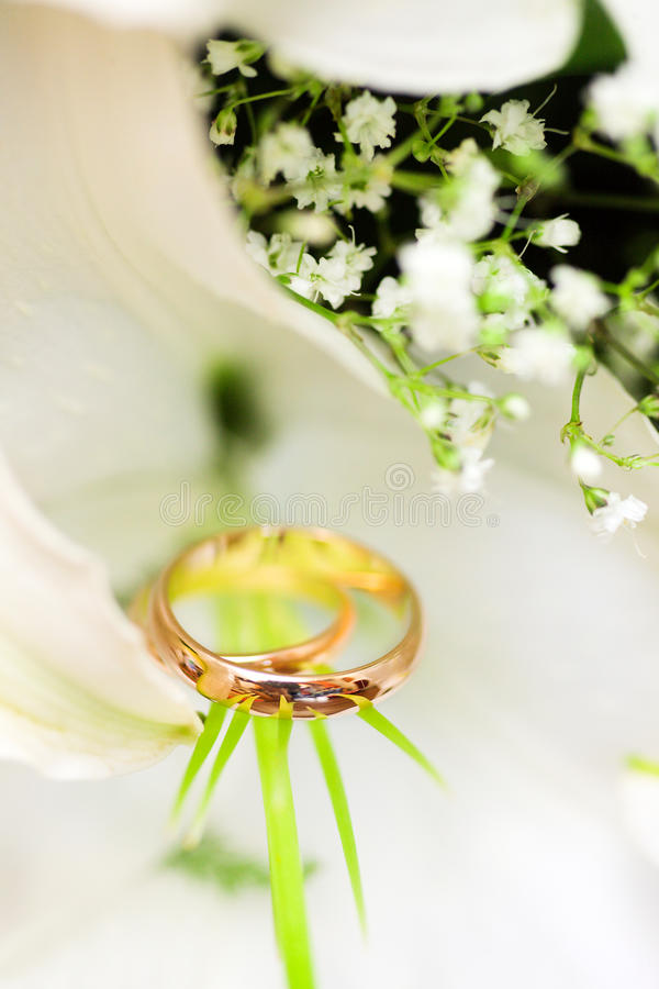Download Wedding Rings Royalty Free Stock Photo - Image: 20127055