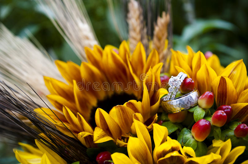 Download Wedding rings stock photo. Image of romance, love, engagement - 21963182