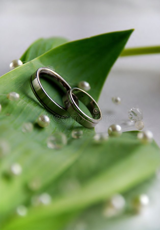 Download Wedding rings stock image. Image of anniversary, dating - 2358199