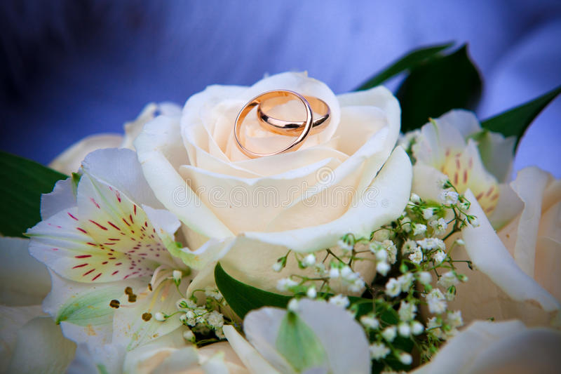 Download Wedding rings stock photo. Image of petal, bouquet, flowers - 24272746