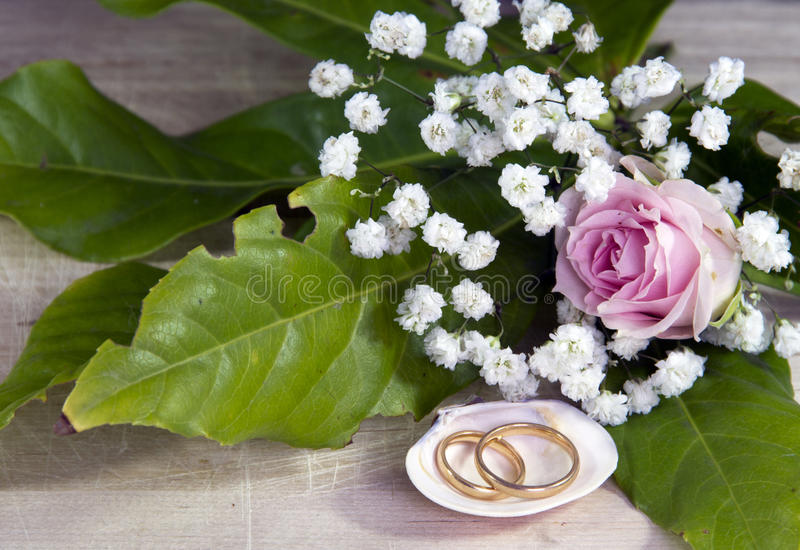 Download Wedding rings stock photo. Image of white, background - 25831854