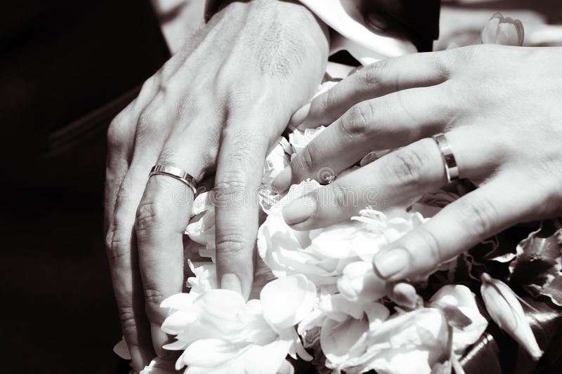Download Wedding rings stock photo. Image of hands, fingers, rings - 26140280