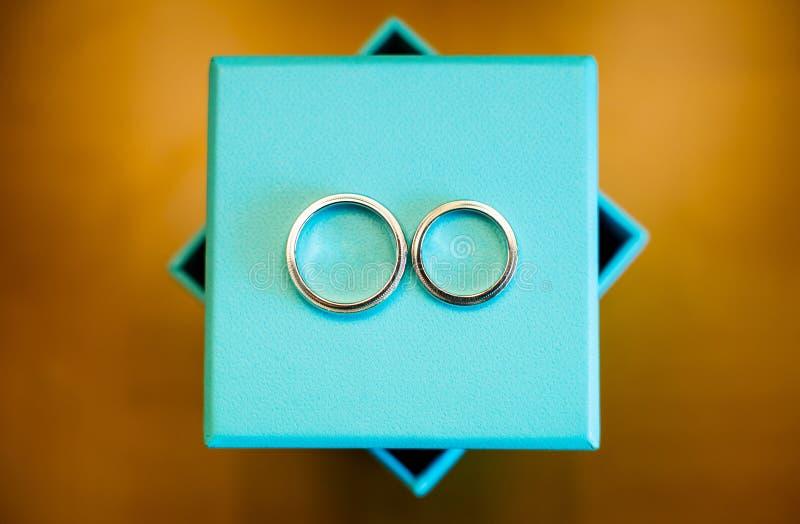 Download Wedding rings stock photo. Image of color, eternaljewelry - 28801064