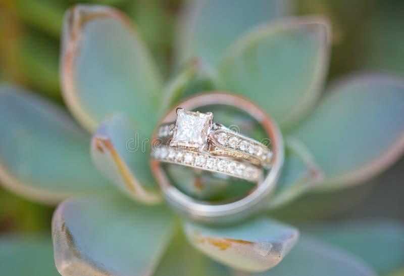 Download Wedding Rings Royalty Free Stock Image - Image: 28888326