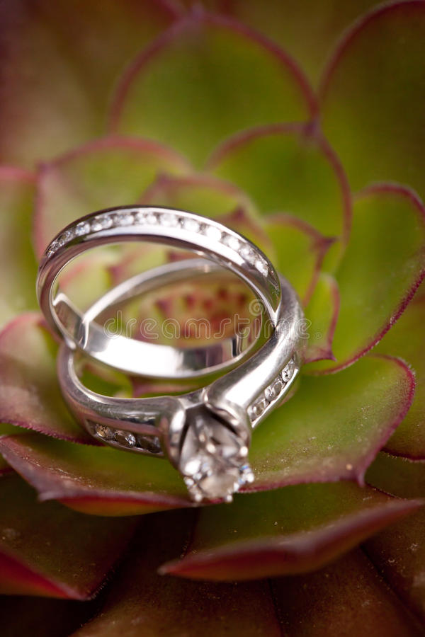 Download Wedding Rings stock image. Image of jewelery, know, background - 28893655