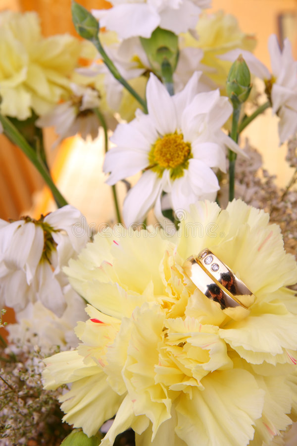 Download Wedding rings stock photo. Image of elegance, background - 5591218