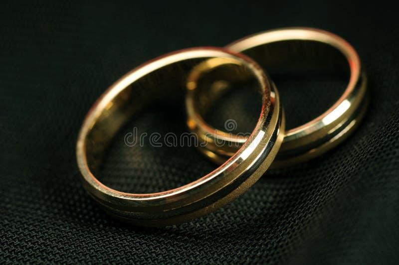 Download Wedding Rings stock photo. Image of hands, love, bride - 5775932