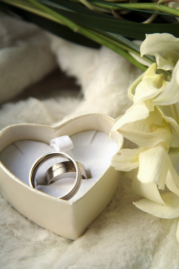 Wedding rings. Picture of a wedding rings in a heart box royalty free stock photos