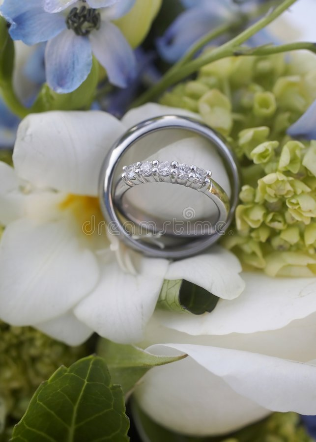 Download Wedding rings stock photo. Image of commitment, husband - 6898400