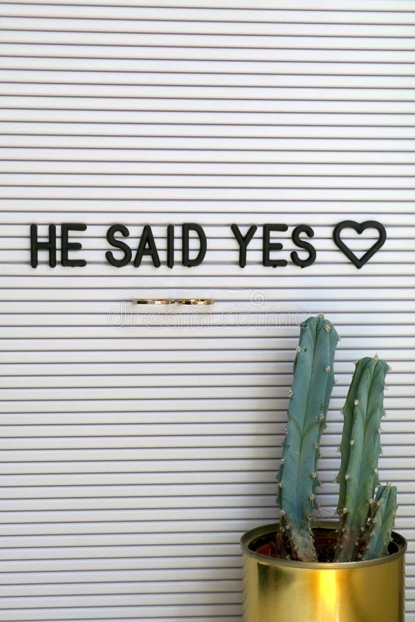 Wedding Rings. Bulletin board with wedding rings and love message, and cactus on a shelf. Wedding concept stock photo