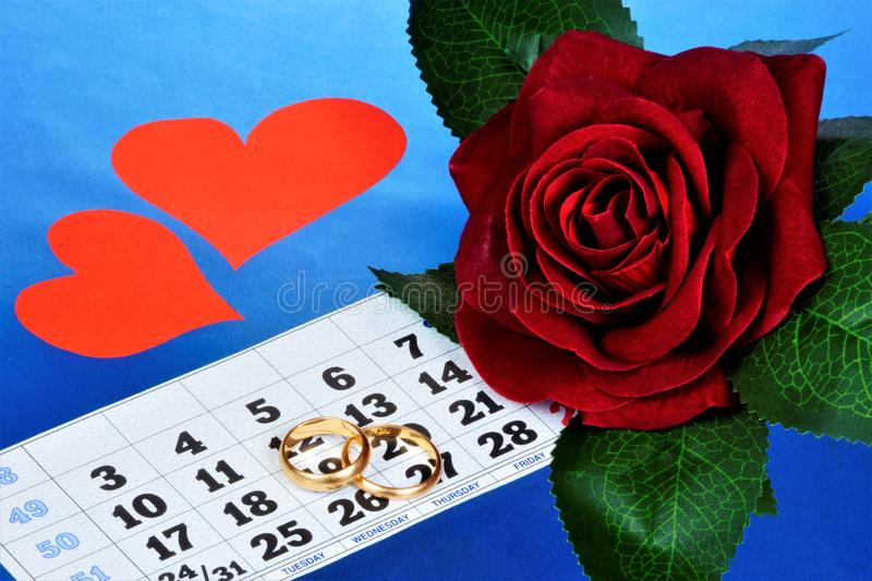 Wedding rings on the calendar, hearts of love and a rose. Wedding planning-the choice of the date of celebration on the calendar, royalty free stock photography