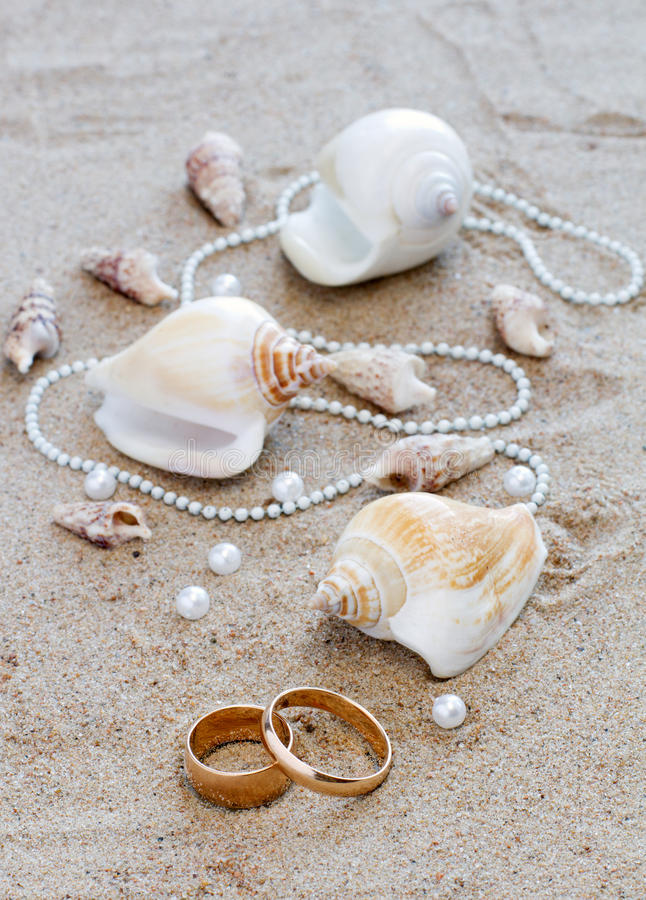 Wedding rings and cockleshells on sand stock image