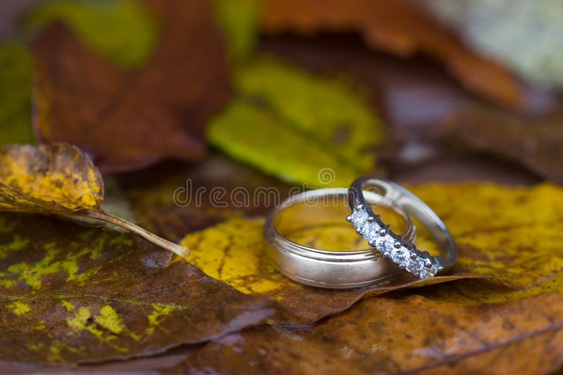 Download Wedding Rings in the Fall stock image. Image of wedding - 4973357