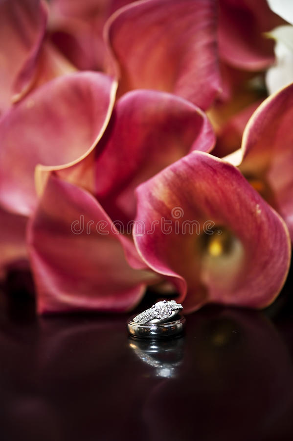 Wedding rings and Flowers. His and hers wedding rings in front of pink lily flowers royalty free stock photography