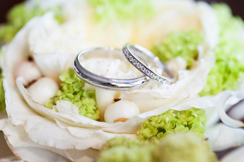 Wedding Rings. In fresh flowers stock image