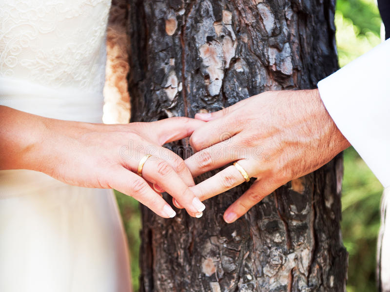 Wedding rings on hands newlyweds. On background of wood royalty free stock images