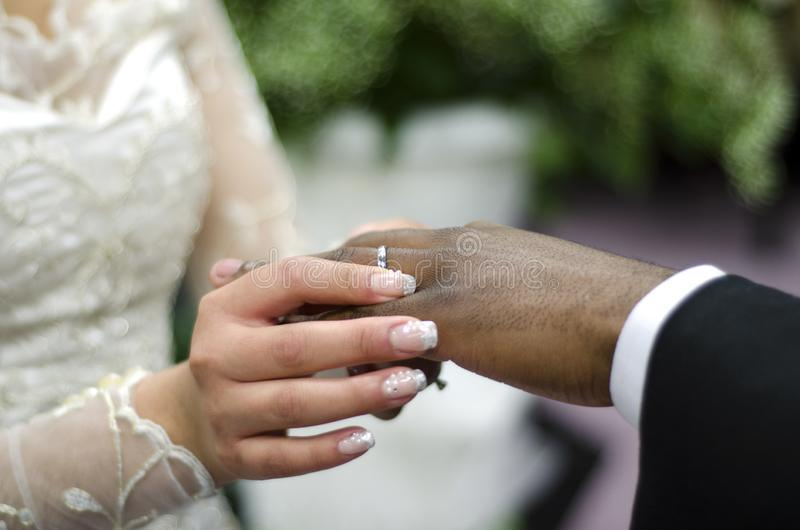 Wedding rings on interracial couple stock photo