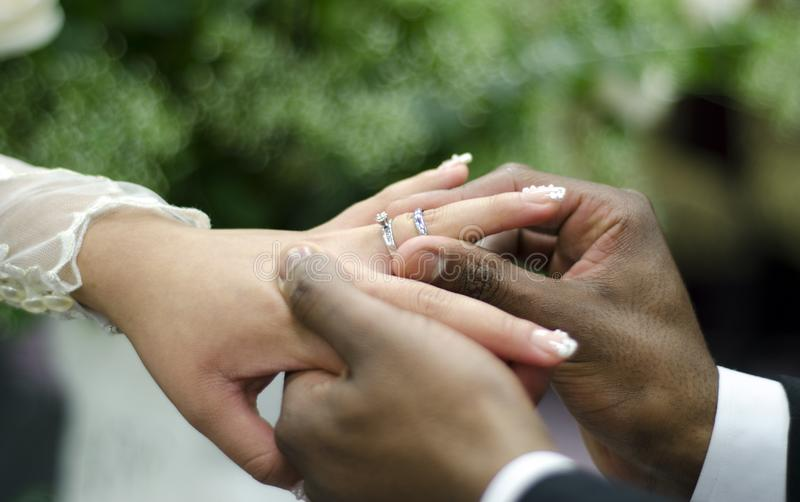 Wedding rings on interracial couple royalty free stock photo