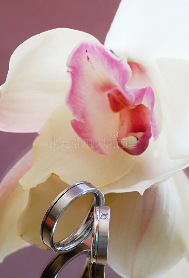 Download Wedding rings and orchid stock photo. Image of jewel, gemstone - 7248162