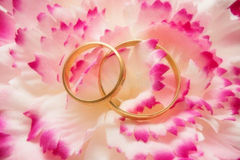 Wedding rings over petals stock photos