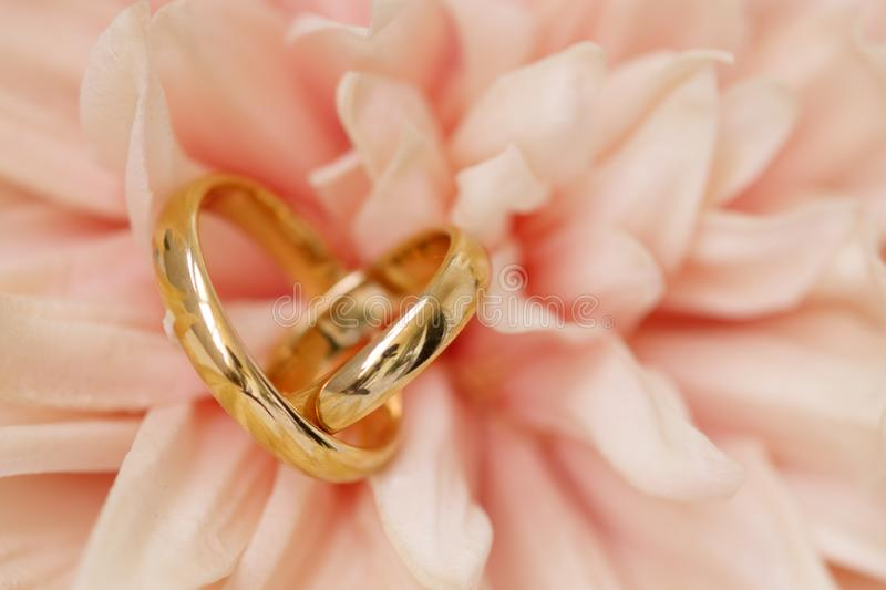 Wedding rings on pink flower royalty free stock photography