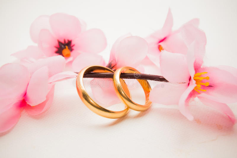 Wedding rings and pink flowers stock image