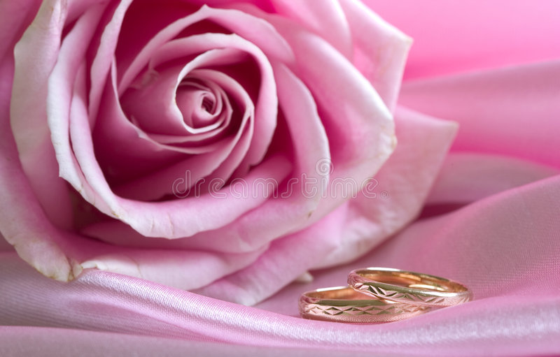 Download Wedding Rings On Pink With Rose Stock Photos - Image: 1614393