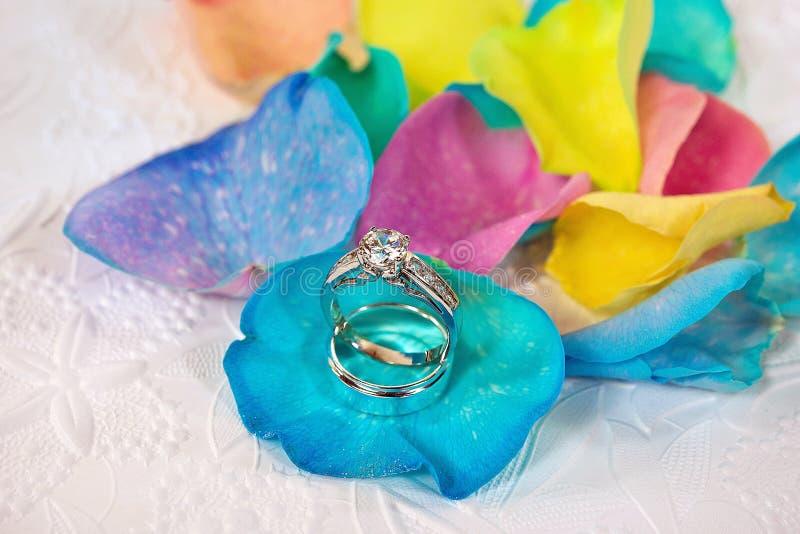 Wedding rings on rainbow rose petal stock photo