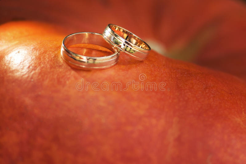 Wedding rings with red gold royalty free stock photos