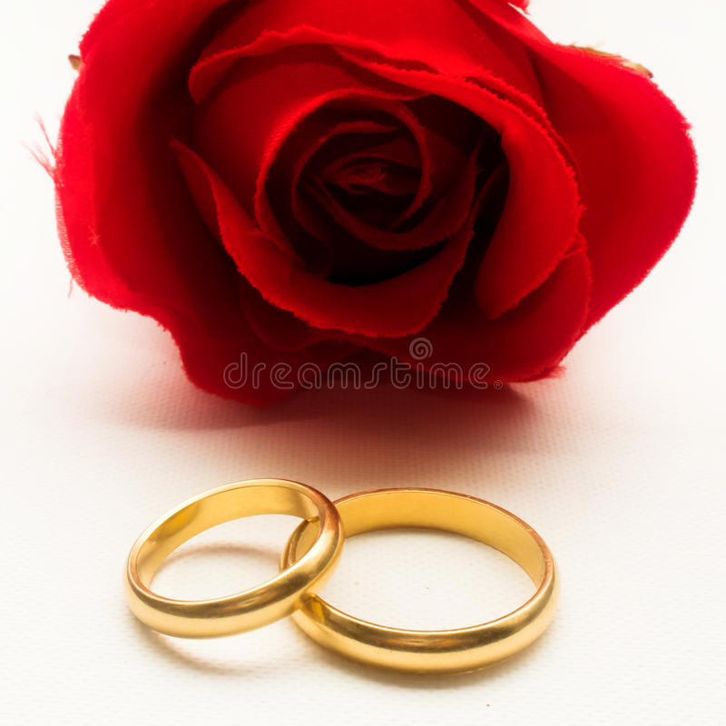 Wedding rings and red rose stock photo