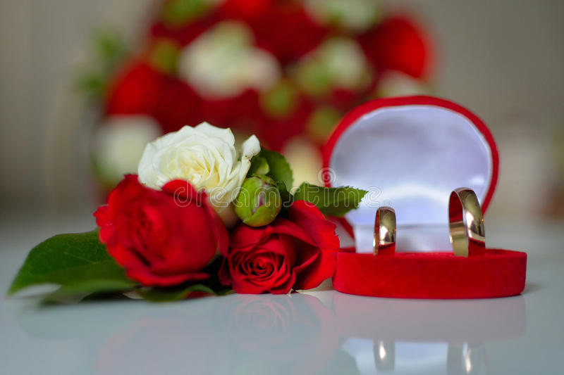 Wedding rings, red roses stock photo