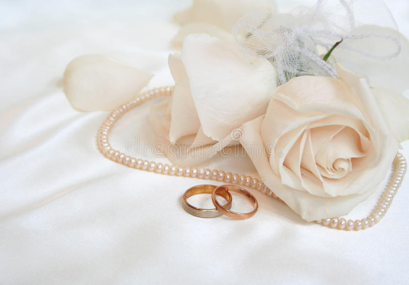 Wedding rings and roses stock image Image of love rose 10250831