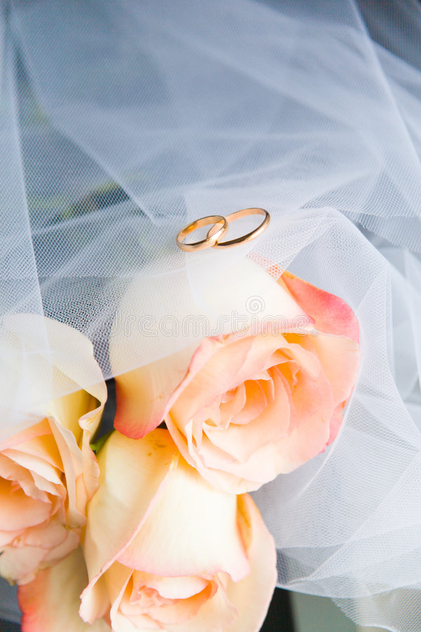 Download Wedding rings and roses stock image. Image of couple, engagement - 4007171