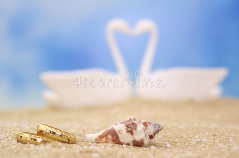 Wedding Rings and Sea Shell. On Sand With Swans in Background royalty free stock photography