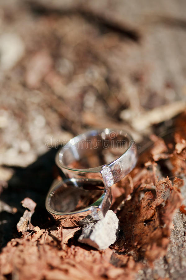 Download Wedding rings on the table stock image. Image of white - 26323475