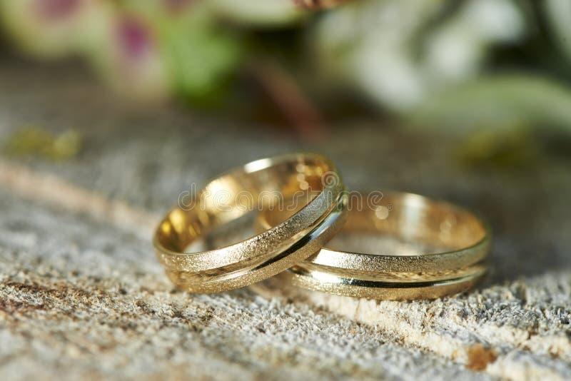 Wedding Rings on Tree Stumb stock photo