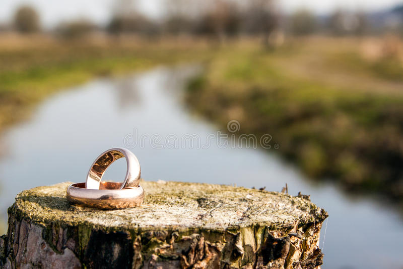 Wedding rings. Two old wedding rings on the wooden pillow. A blurry river in the background stock images