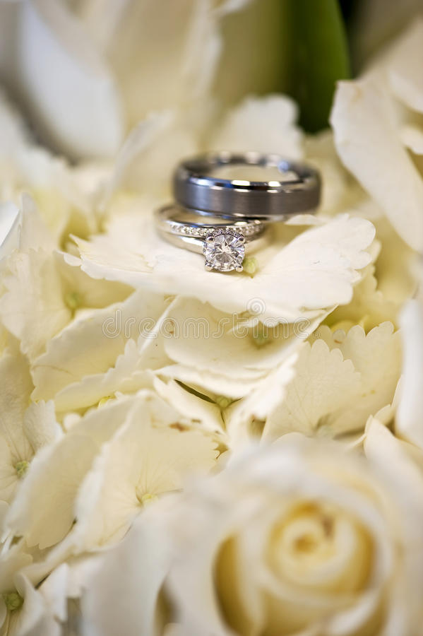 Download Wedding Rings In White Flowers Stock Photography - Image: 18673932