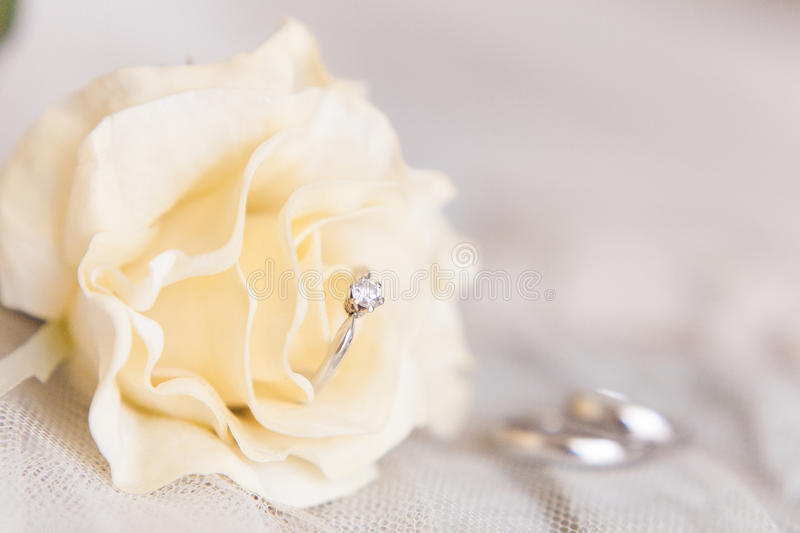 Wedding rings of white gold and angage ring stock photos