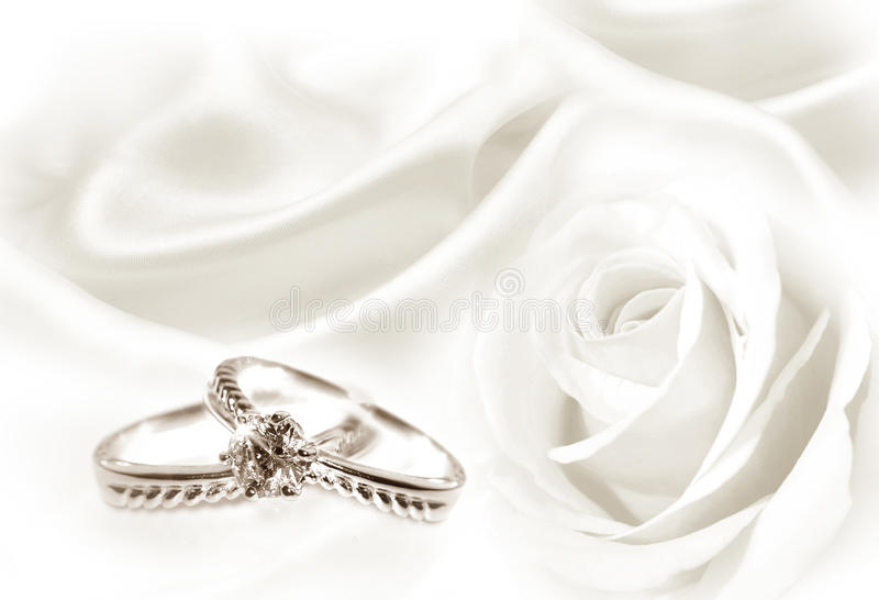 Wedding rings and white rose. Wedding rings with a background of white rose and fabric stock photos