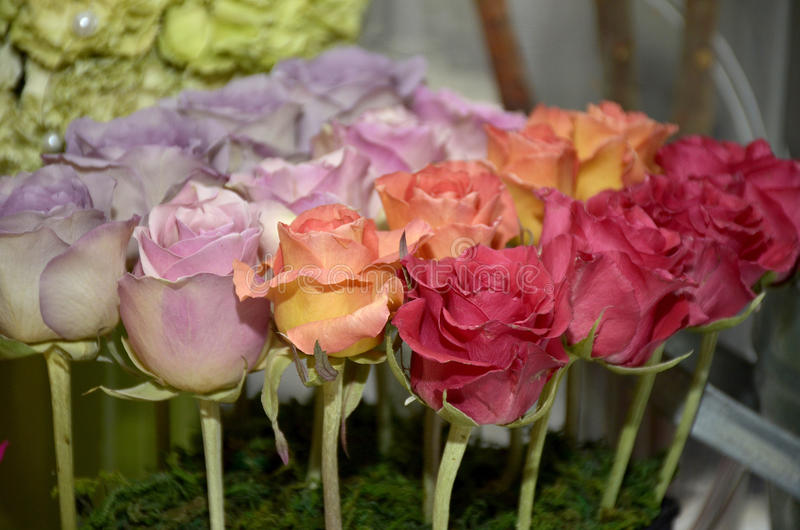 Wedding roses dried stock images