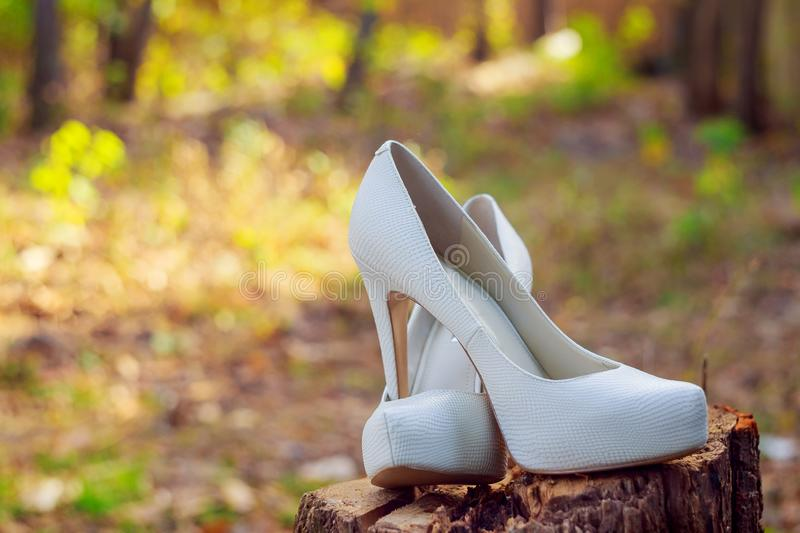 wedding shoes bride royalty free stock images