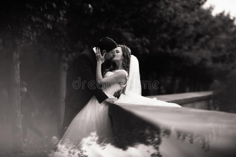 Wedding shot of bride and groom in park. Romantic scene in the park. Black and white royalty free stock photo