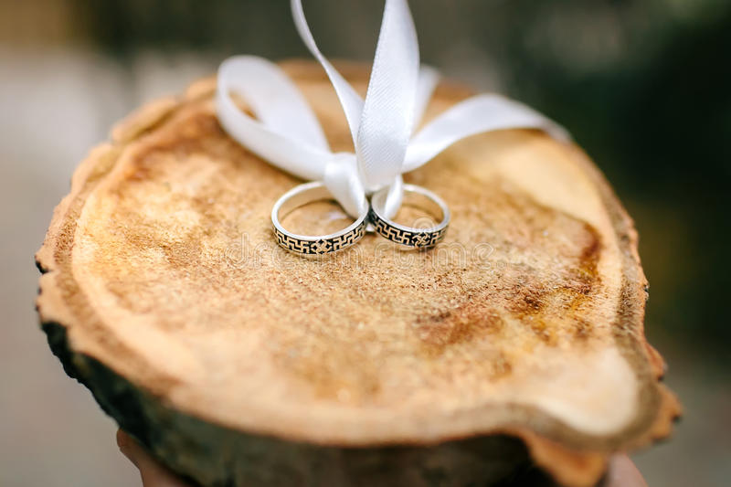 Wedding silver rings on wood cut which bandaged with white ribbon royalty free stock photo