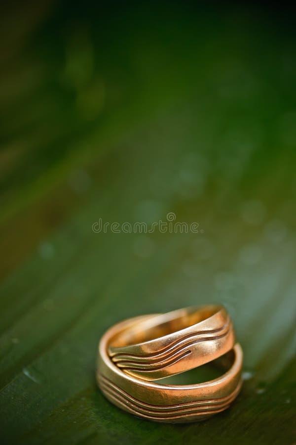 Download Wedding still-life stock image. Image of brilliant, gift - 25189873